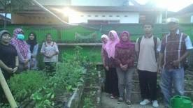 Tempat budidaya tanaman sayur hidroponik oleh Kelompok Tani Gemahripah yang berlokasi di RW 9 Kelurahan Bausasran.