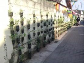 Salah satu dari 16 kampung lorong Sayur